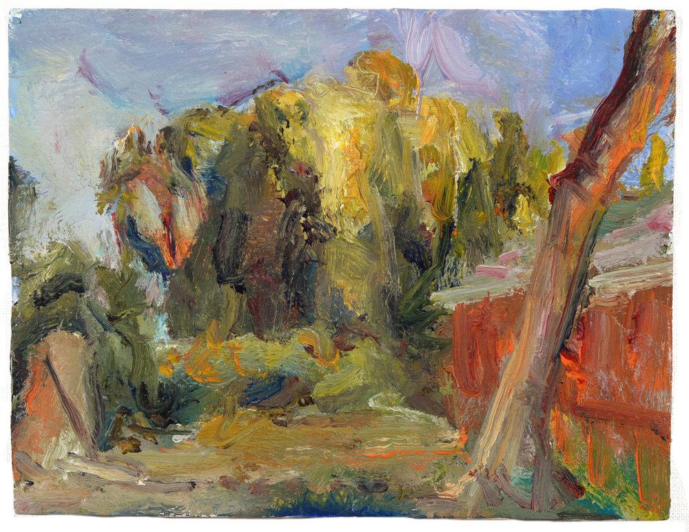 """Sunlit Trees"" oil on panel  2014  8""x10"""