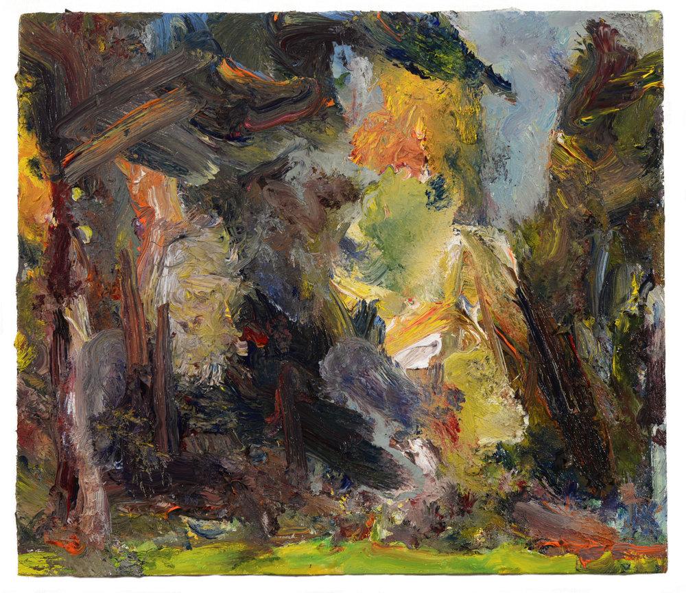 """Sunlit Trees"" oil on panel  2016  12""x14"""
