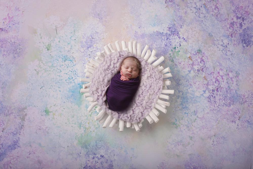 lilic-dreams-coral-download.jpg