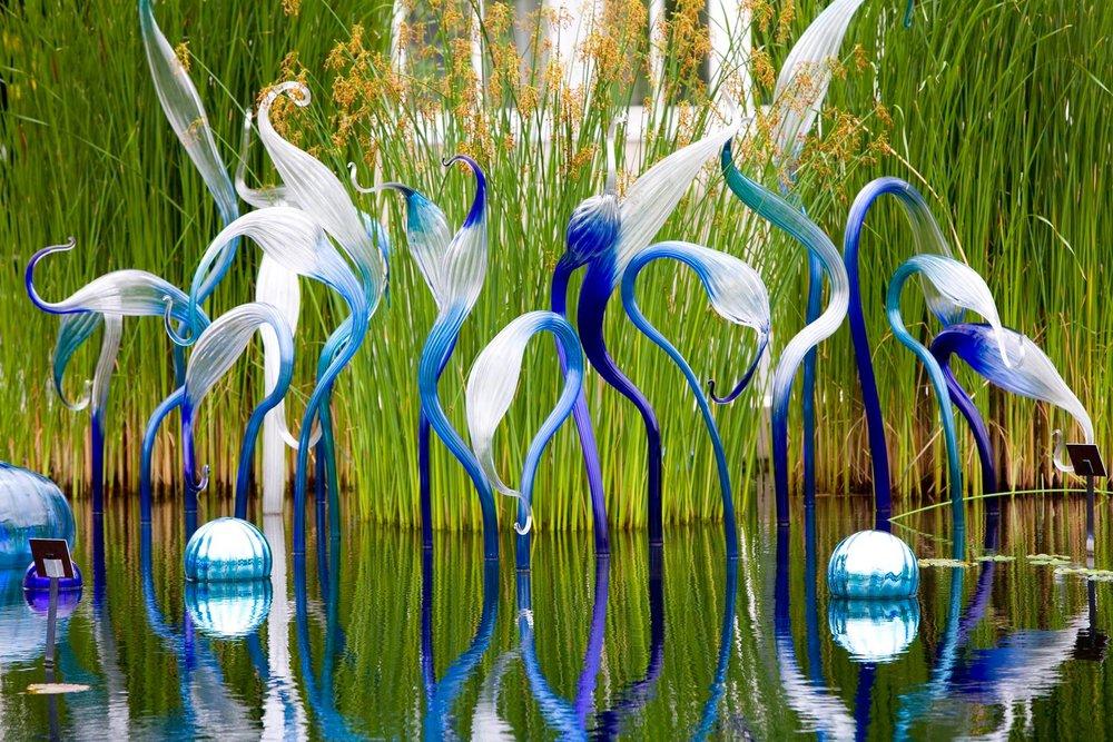 Blue Herons, 2006