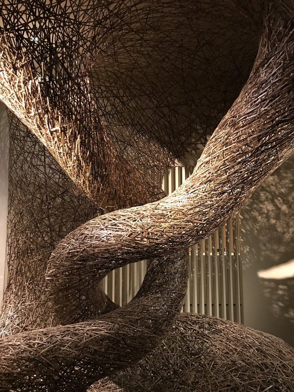 Bamboo Opening.jpg