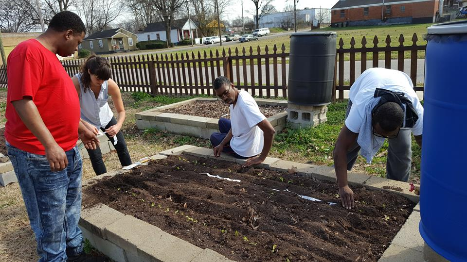 GrowMemphis Community Garden Elective, St. Paul Garden. In partnership with Advance Memphis.