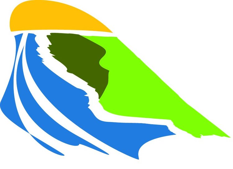 delta health alliance logo.jpg
