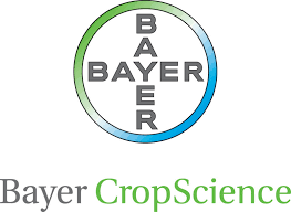 Bayer CS.png