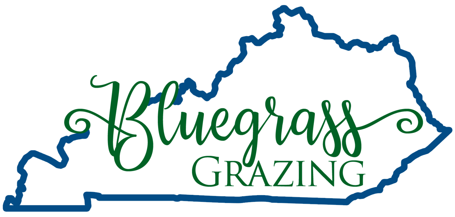 Bluegrass Grazing