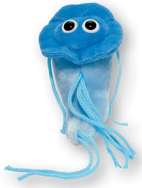 This super weird Giardia puppet may look cute, but I will assure you, the symptoms of a giardi infection are not cute in the slightest.