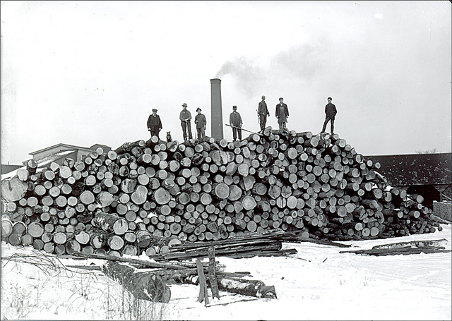 Logs arriving at a mill in Keene to be cut.