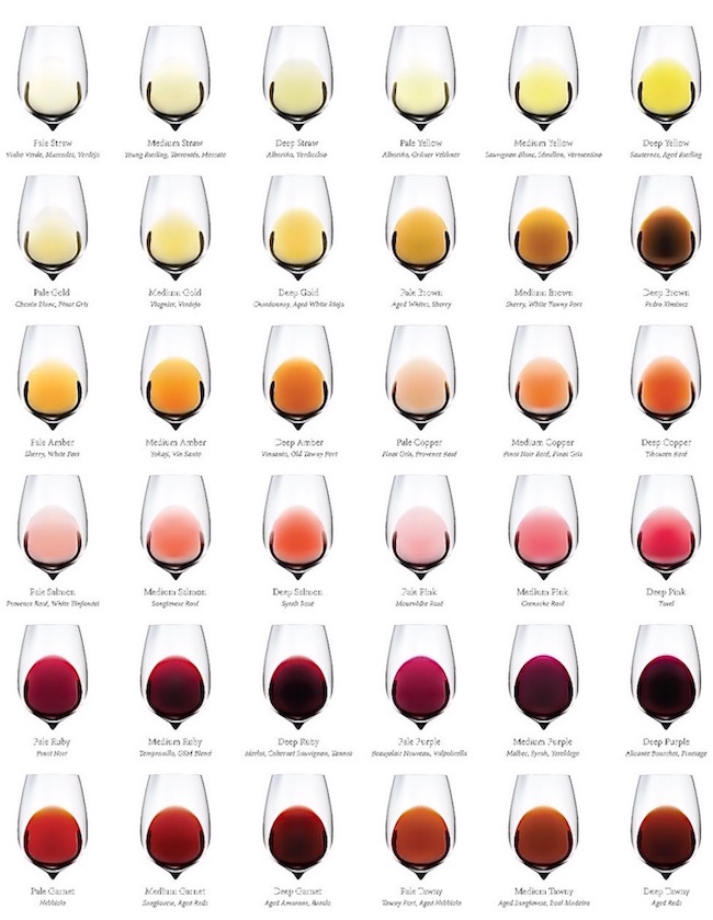 Color-of-Wine-chart-winefolly.jpg