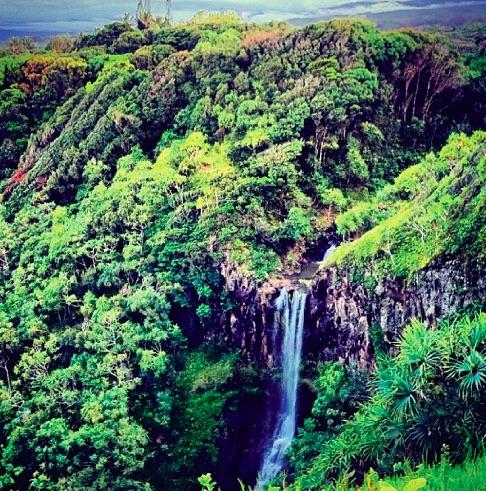 Mana - waterfall - smaller file - Maui.jpg