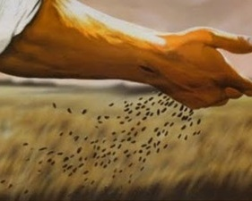 Sermon #1 - Parable of the Mustard Seed