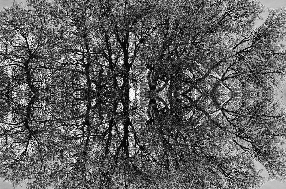 Symétries (2011 > 2015)