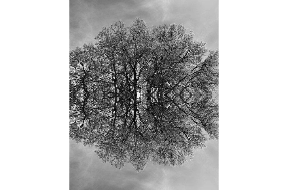 guiran_symetries_5.jpg