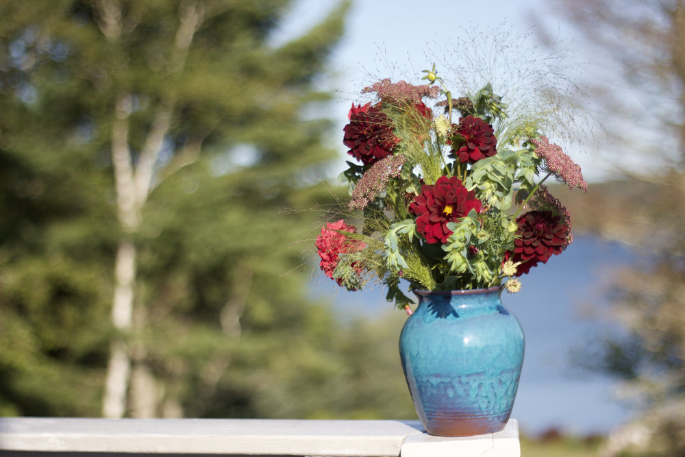 Philosophie Floral - Maine Dahlias