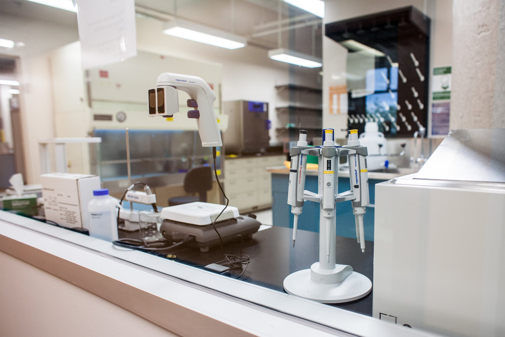 lab (1 of 2).jpg