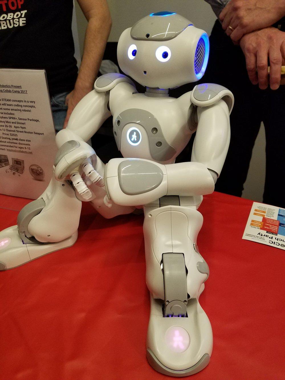 Mass Robotics