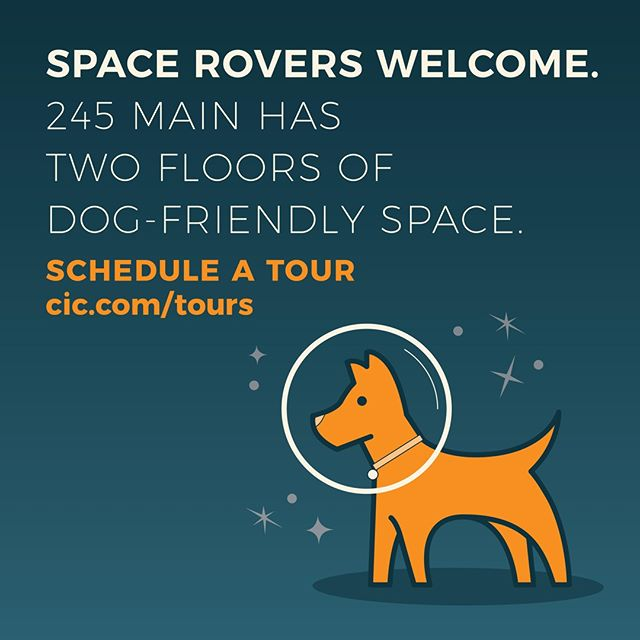For the first time ever, CIC is opening its doors to canine members! Because every day should be bring your pup to work day. . . . . . #dogsofinstagram #officedogs #245launch #coworking #innovation #entrepreneur #cambridge #kendallsquare #workspace #startuplife