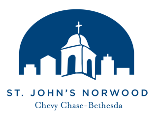 st johns logo blue 1.png