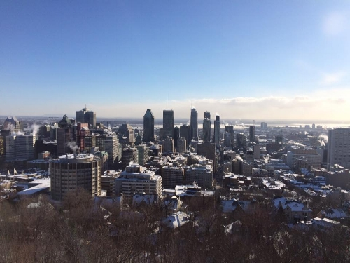 View from Mont Royal. Nothing like a hike up a small mountain in 0 degree weather.