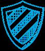 noun_protection shield_1769217.png