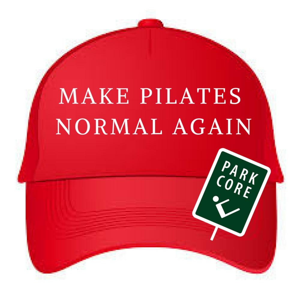 MAKE PILATES NORMAL AGAIN.png