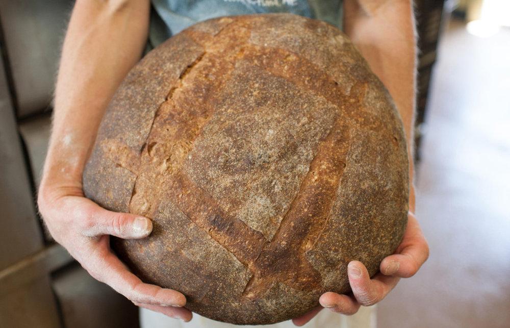 breadweb-3-of-17-1244x800.jpg