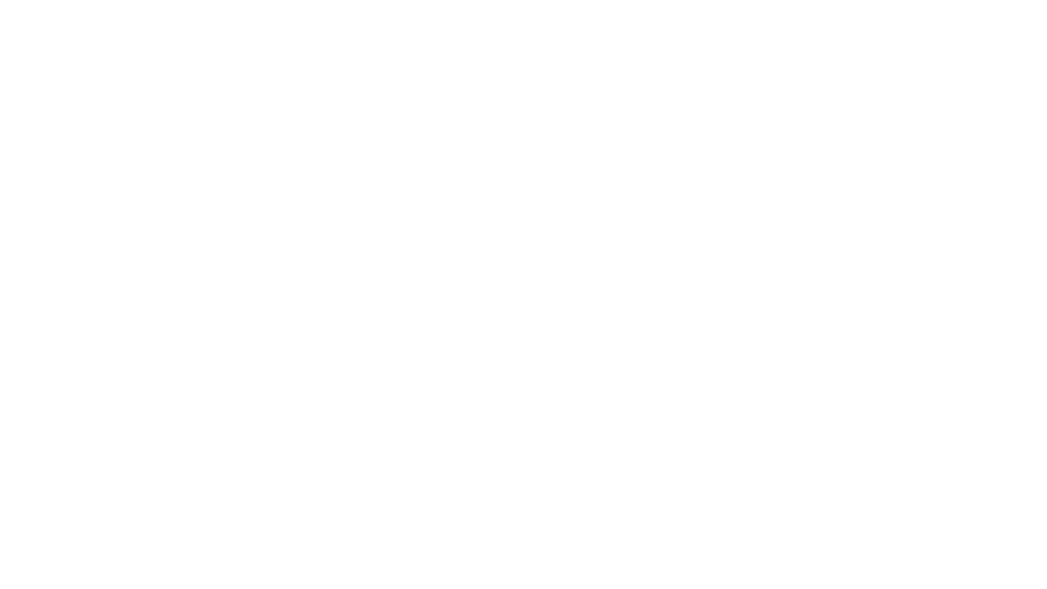 Smokey Bay Air | Bear Viewing in Homer, Alaska