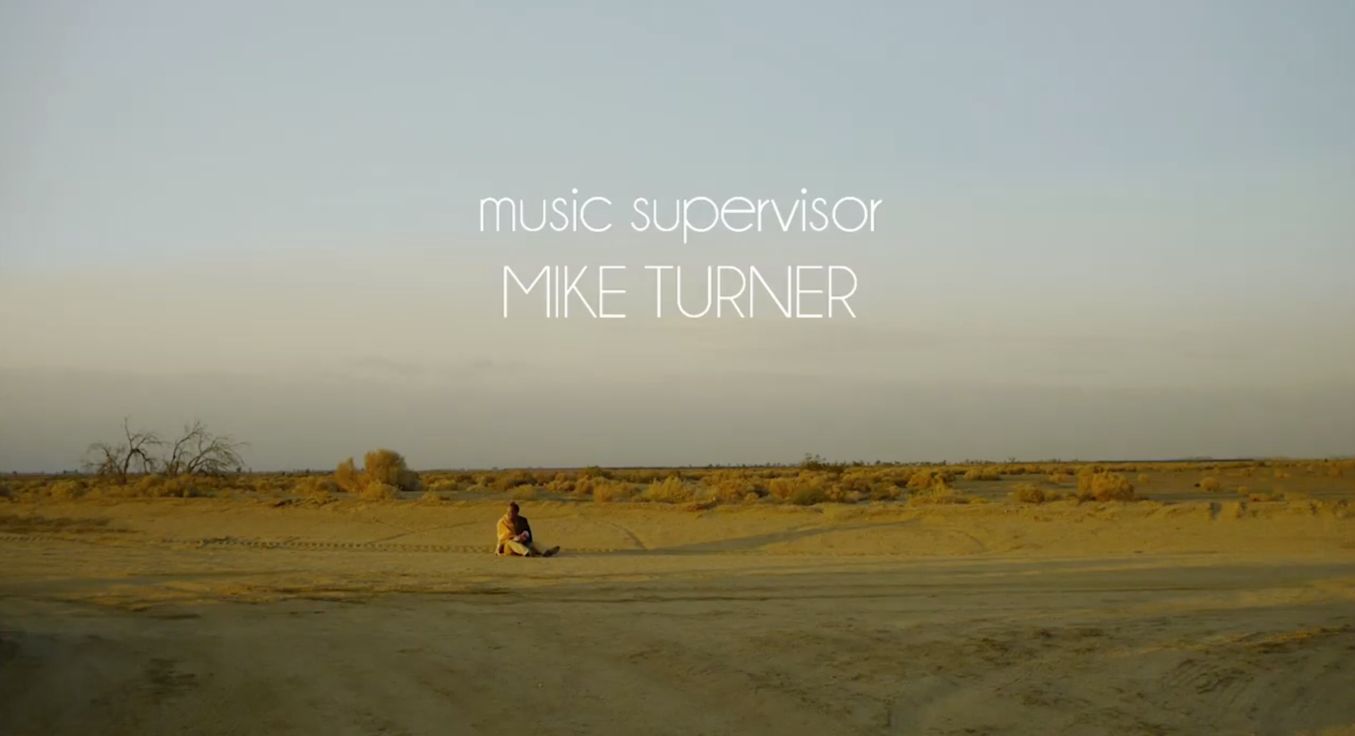 Bio — Mike Turner