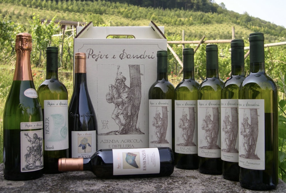 27f5a9218681 Providore Fine Foods — Meet the Winemaker  Federico Sandri of Pojere ...