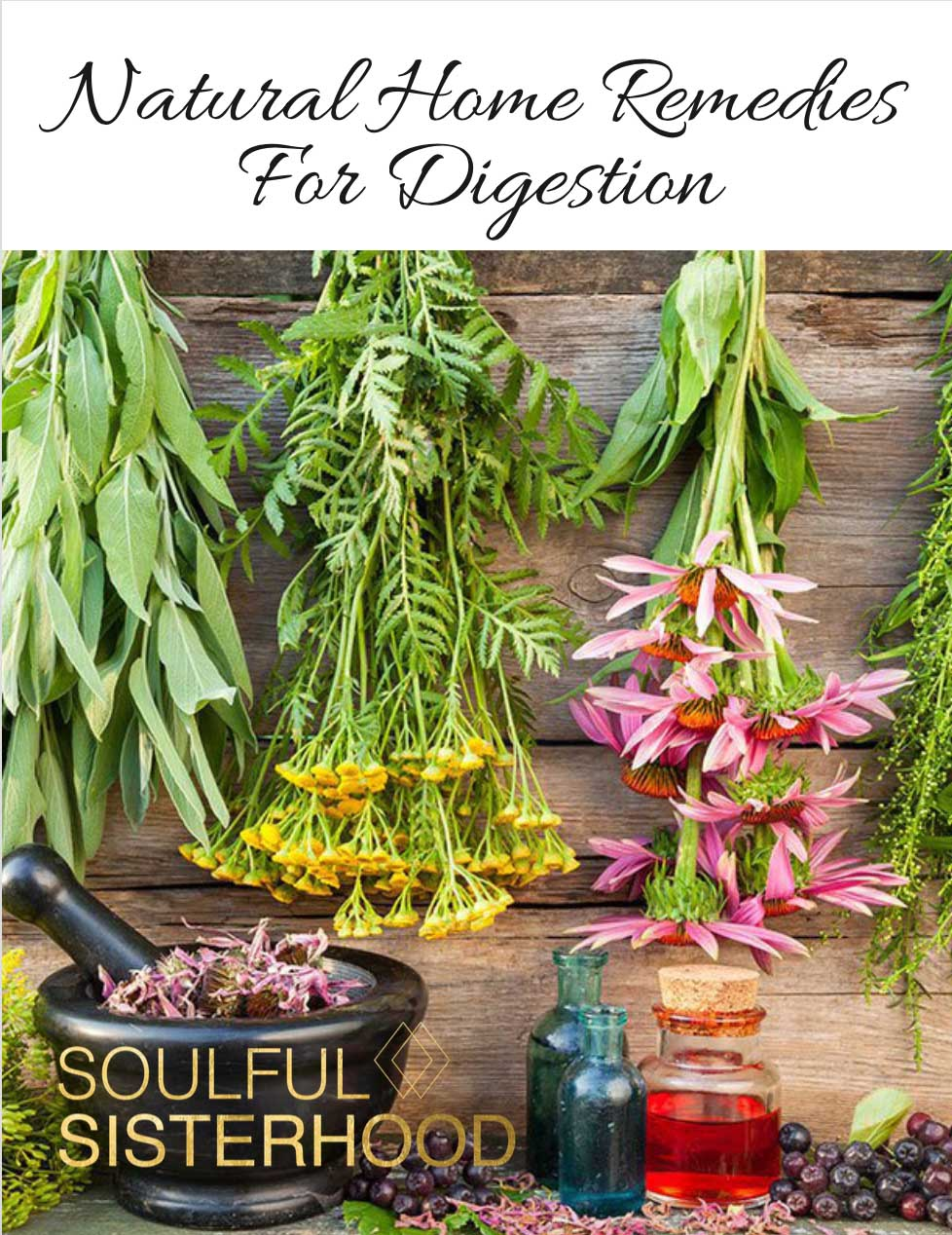 SS - Natural Home Remedies for Digestion E-book.jpg