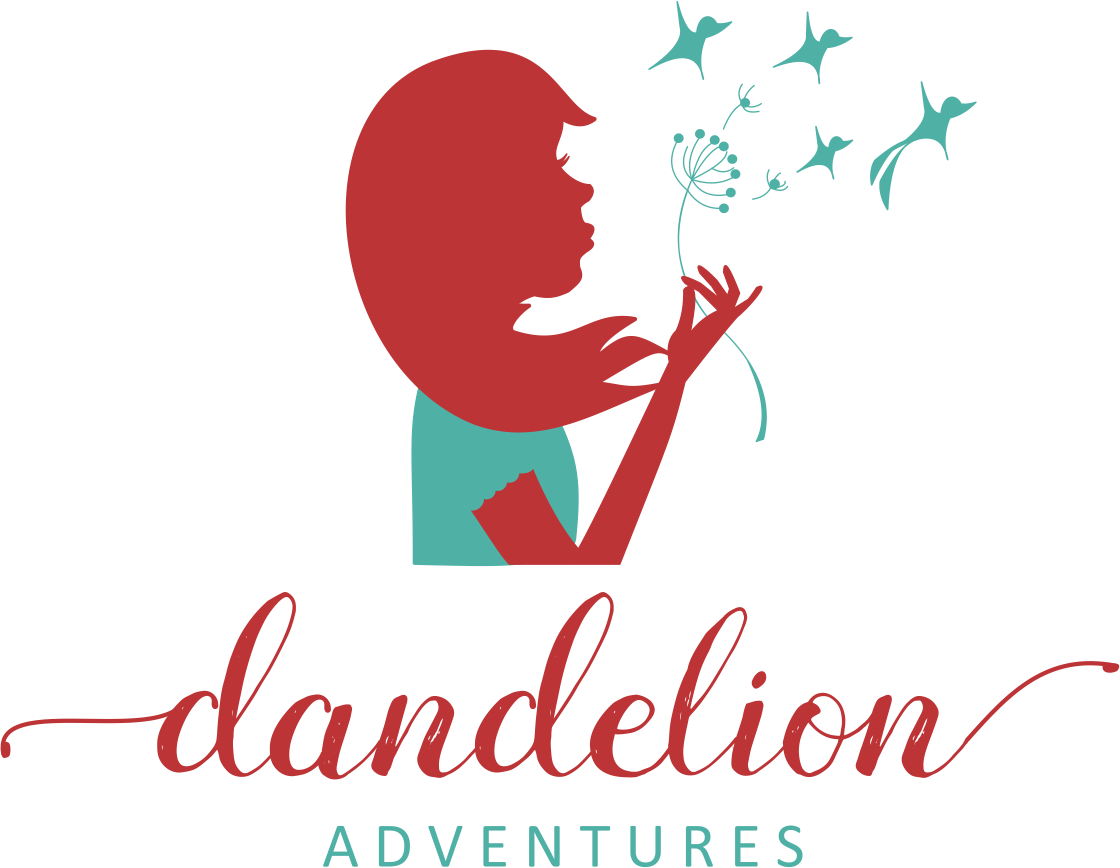 Dandelion Adventures