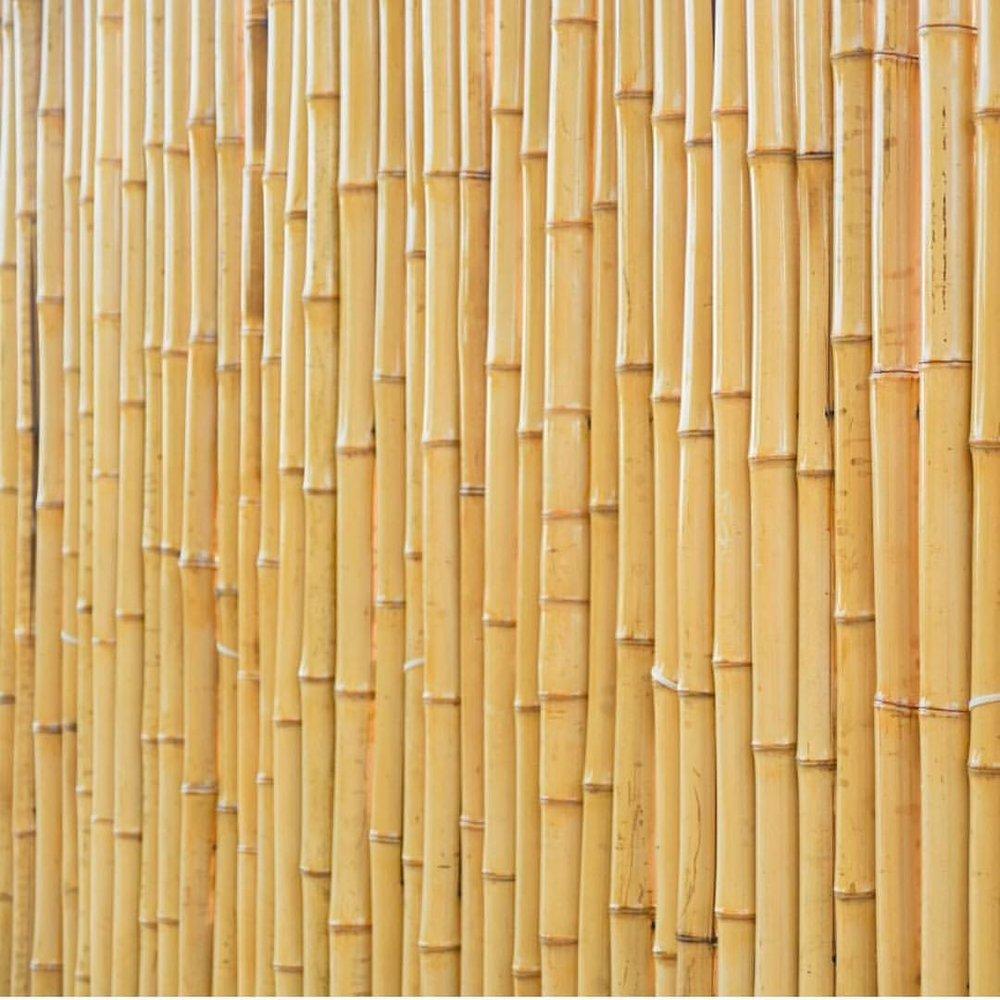 Copy of Bamboo Mountain