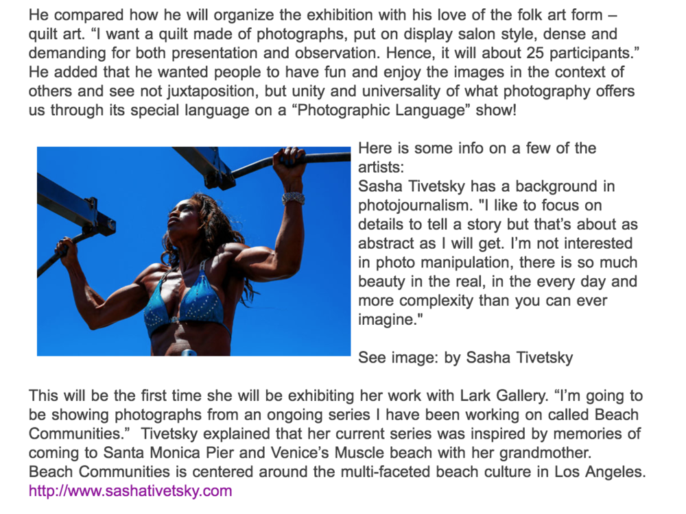 Lark Gallery Show