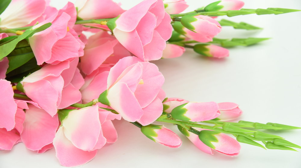 Birthday Flowers -