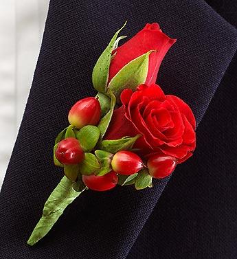 red hypericum berry rose bout.jpg