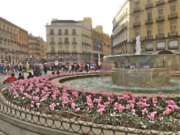 Plaza de Sol Floresida Blog