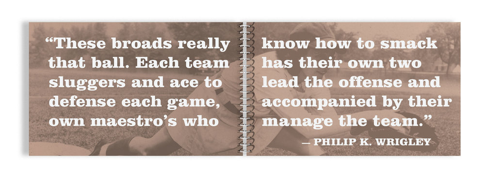 Baseball book quote.jpg