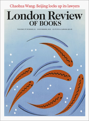 London Review of Books - Along the Divide