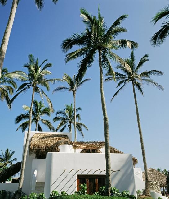 azucar-exterior-building-view-palmtrees-a-01-x2.jpg