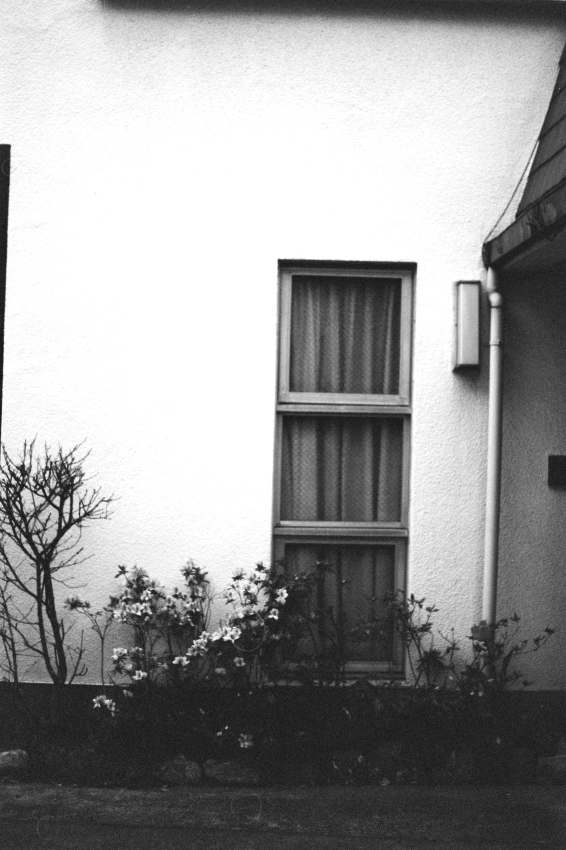DANIELLA_BENEDETTI_TOKYO_HOTEL_WEEKEND2.JPG