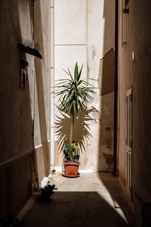 APihan Puglia 13.jpg