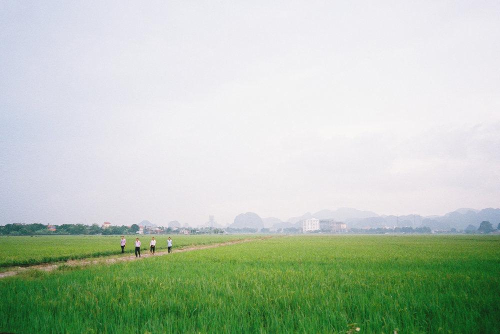 Vietnam-Hotel-W-Seq02.jpg