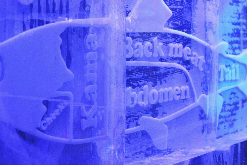 Jordan_Bunker_Icebar_London_12.jpg