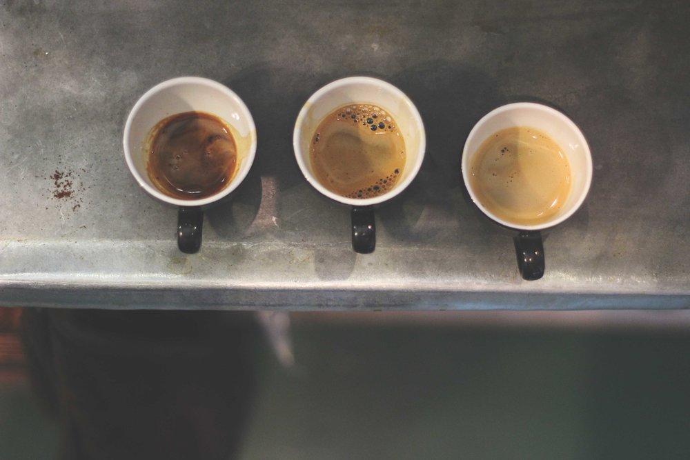 Jordan_Bunker_talking_coffee_with_South_Coast_Roast_3.jpg