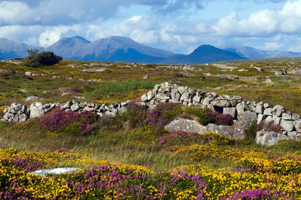 Connemara National Park, Co. Galway