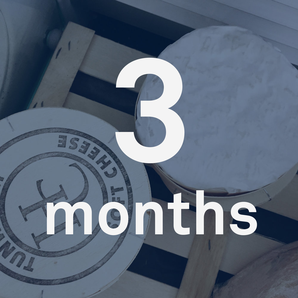 cheese-3-months.jpg