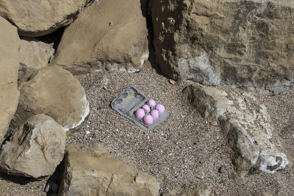 Fossil of Pink Eggs in Plastic Box  Rainham Land ll Site, UK c 150 million years in future