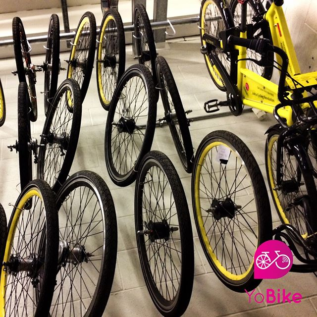 Here at YoBike. Bikes get #cycled, #Repaired, #Recycled, cycled again then repaired and recycled and cycled. Its a cycle of cycles. No part is wasted and we recycle all broken parts in a careful manner.