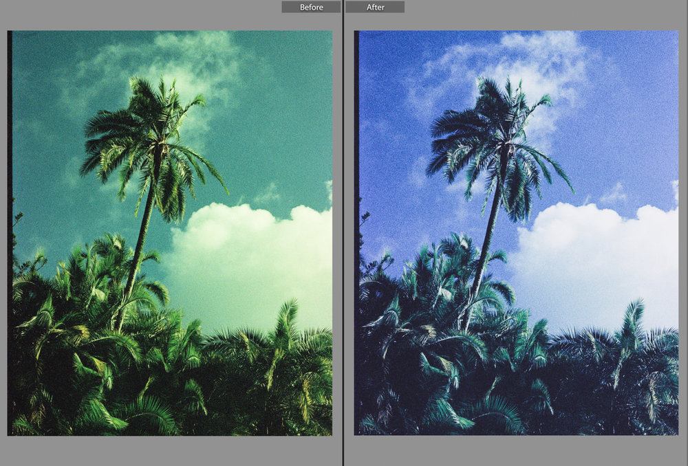 Film Photography Presets 35mm - South Africa - by Ken Treloar Photography-4.jpg
