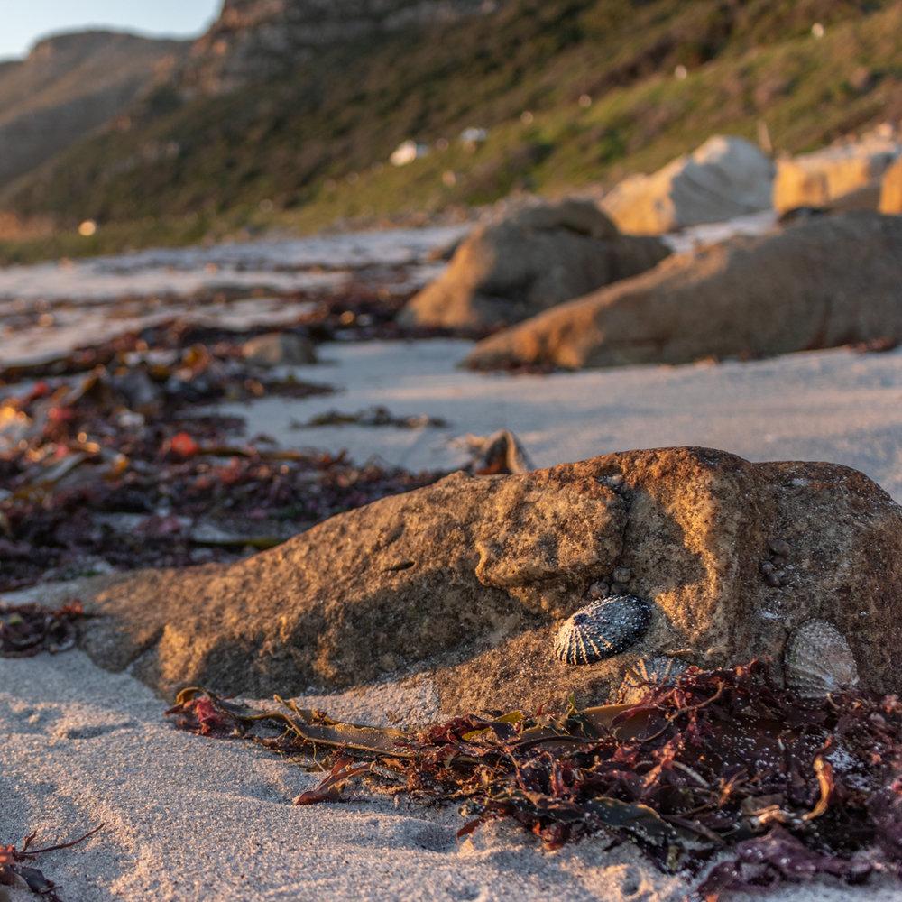 Misty Cliffs Sunset - South Africa - by Ken Treloar Photography-3.jpg