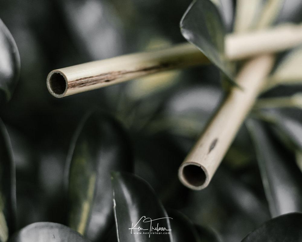 Khanyiso Reed Straws - Zero Plastic - Cape Town-8.jpg